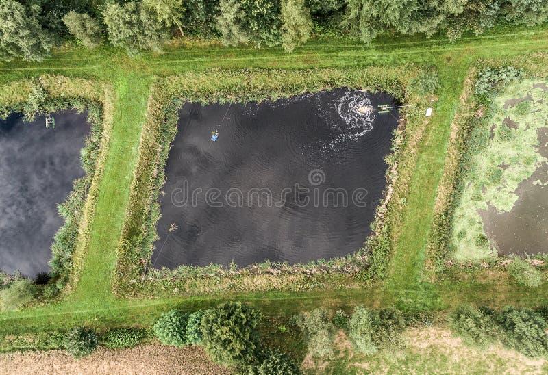 Vijver van een visteelt, luchtfoto verticaal van hierboven stock afbeeldingen