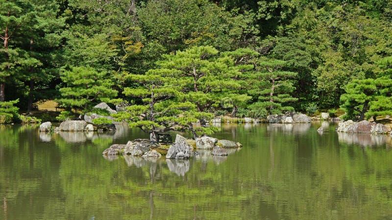 Vijver van Kinkaku ji, gouden tempel in Kyoto stock fotografie