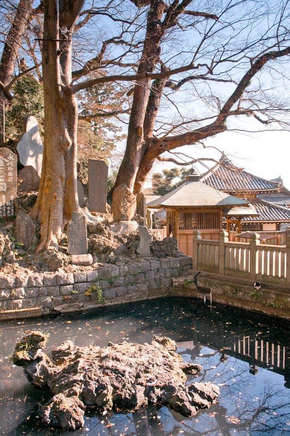 Vijver van Narita San Shinsho ji tempel, Narita, Chiba, Japan stock foto's
