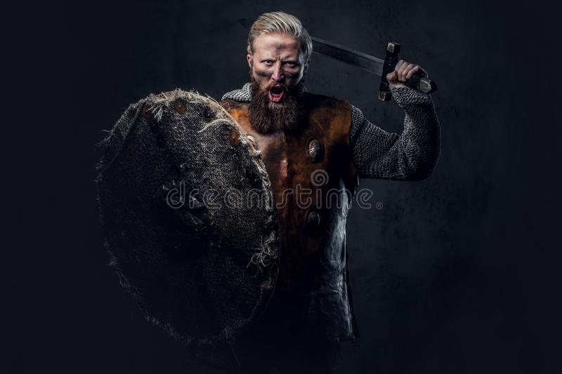 Viking dressed in Nordic armor holds a shield and silver sword. royalty free stock photo