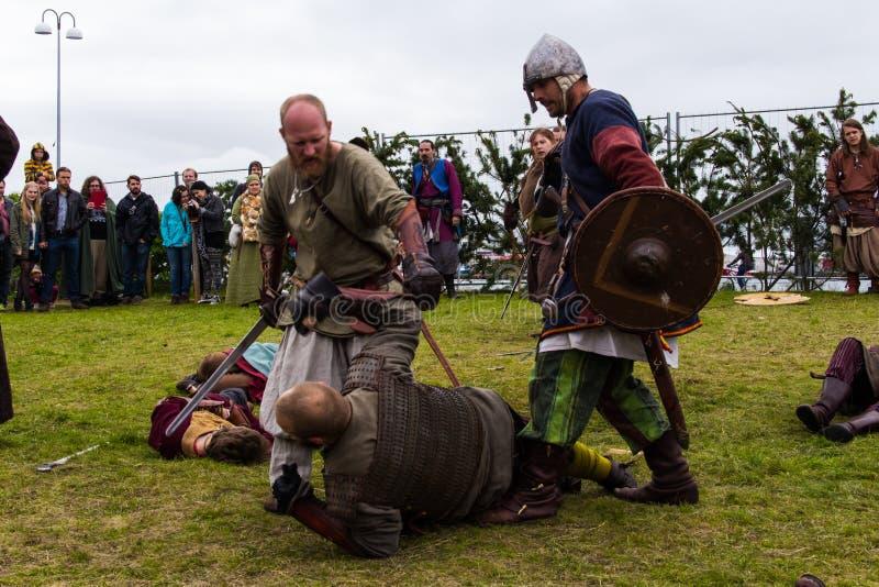 Viking Festival 2014 imagem de stock