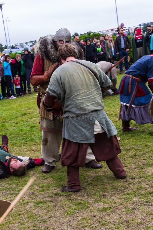 Viking Festival 2014 imagens de stock