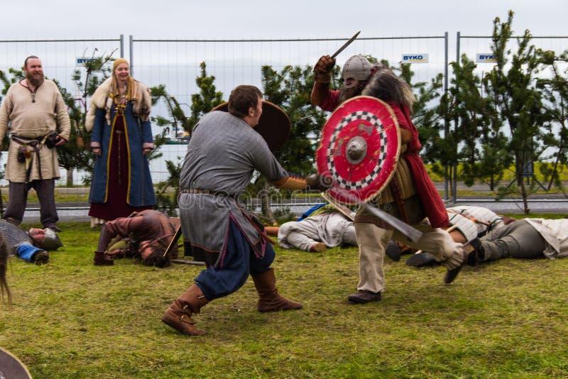 Viking Festival 2014 stockfotografie