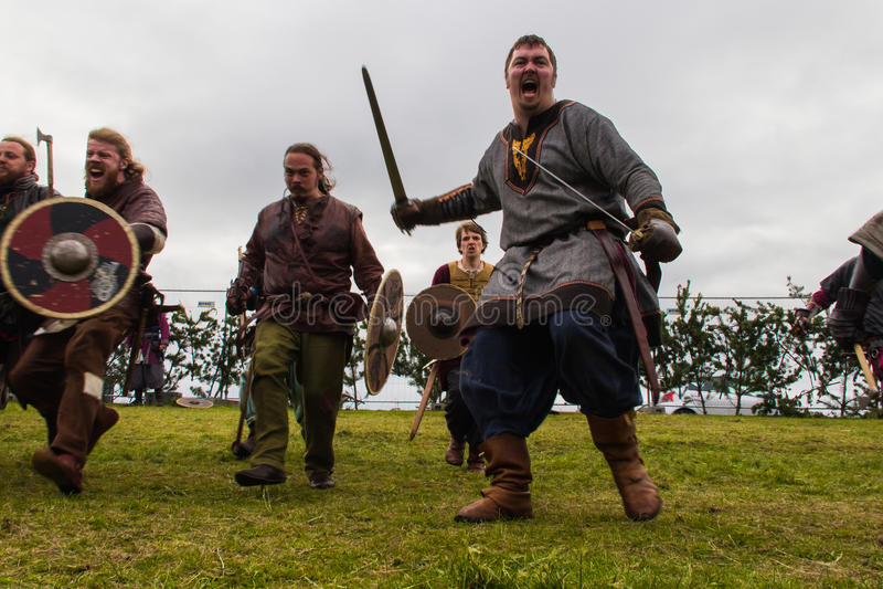 Viking Festival 2014 fotografia de stock royalty free