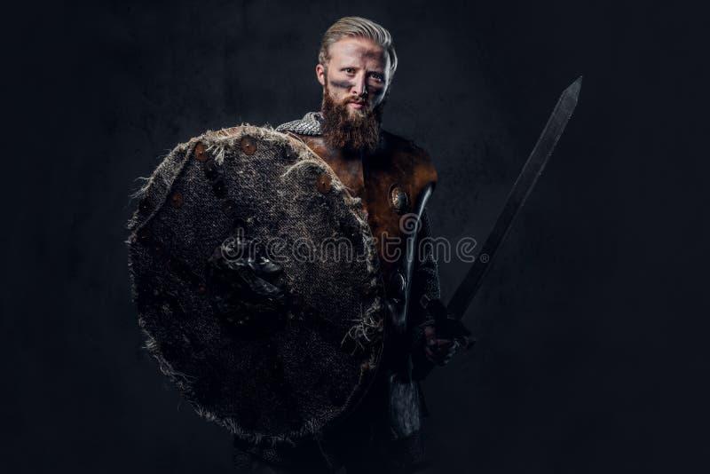 Viking a habillé dans les prises nordiques d'armure une épée de bouclier et d'argent images stock