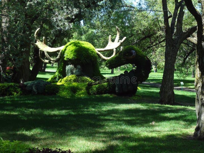 Viking i naturen Botanisk trädgård av Montreal Kanada arkivfoton