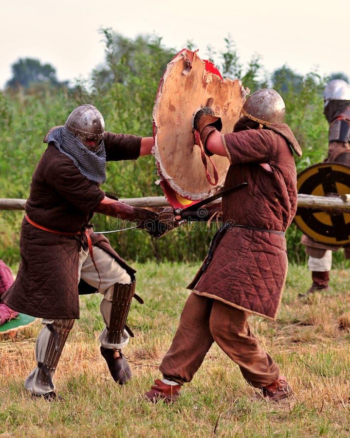 Viking warriors fight. royalty free stock image