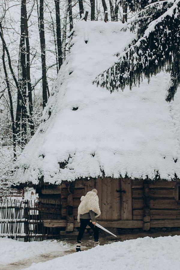 Vikingo fuerte con la espada y el lobo lanzan caminar hacia historica fotos de archivo libres de regalías