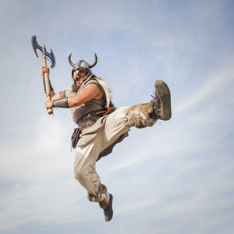 Vikings attaquent du ciel images stock