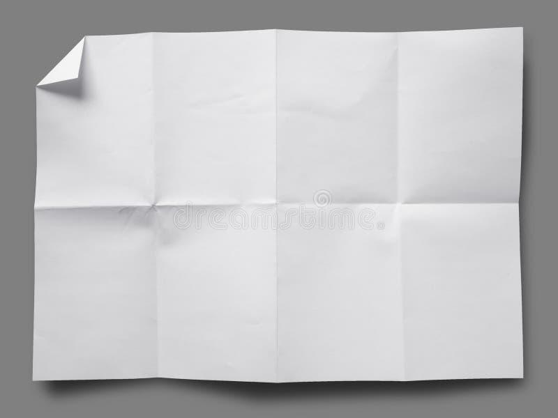 vikt papperswhite för full sida royaltyfri fotografi