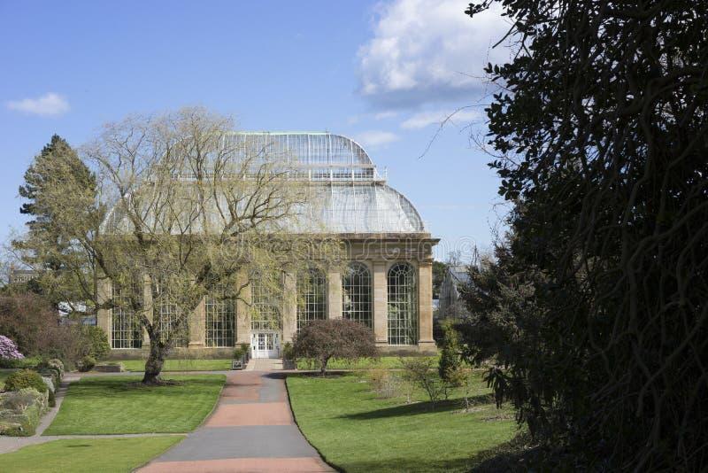 Viktorianskt växthus med det glass taket royaltyfri bild