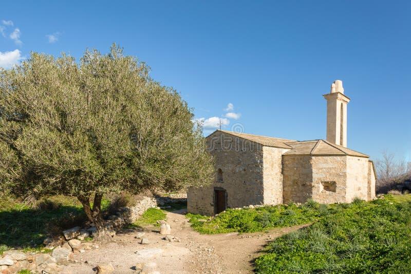 Vila abandonada de Occi perto de Lumio em Córsega fotografia de stock