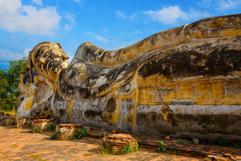 Vila Buddha på Wat Lokayasutharam Temple i historiska Ayuthaya parkera i Thailand royaltyfria bilder