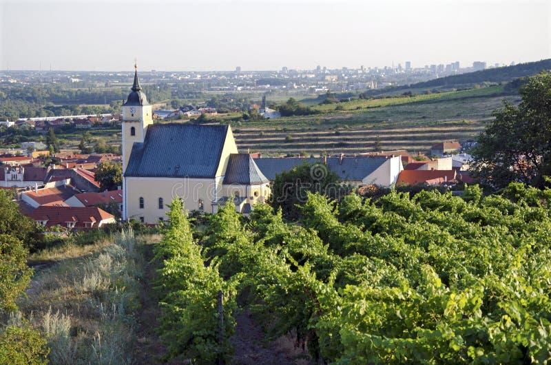 A vila com vinhedo foto de stock