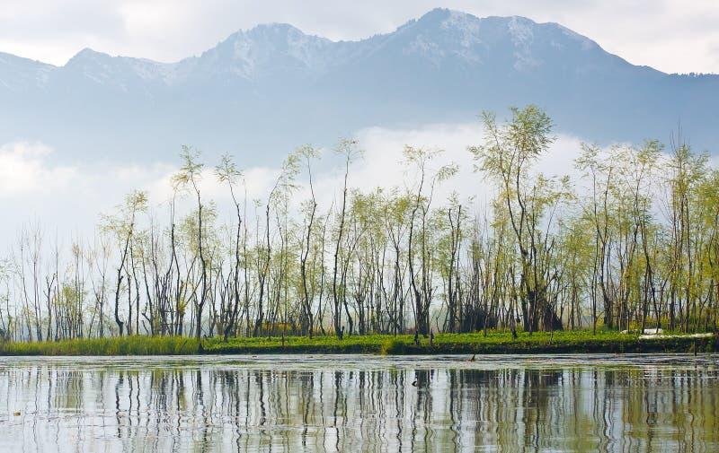 Vila da água, ponto de vista de Srinagar imagem de stock