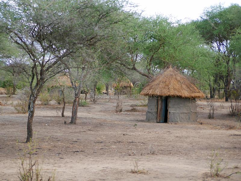A vila das massas no safari de Tarangiri - Ngorongoro em Afric fotos de stock royalty free