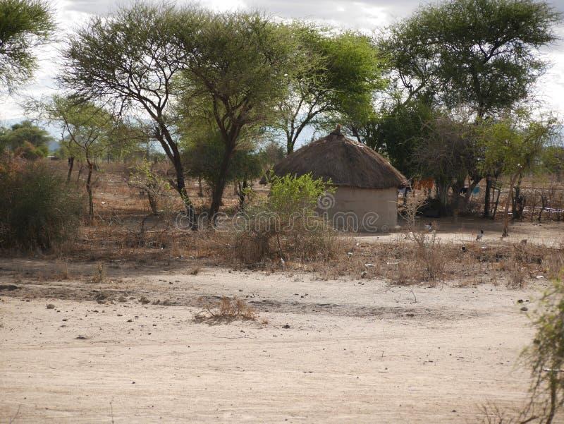 A vila das massas no safari de Tarangiri - Ngorongoro em Afric foto de stock royalty free