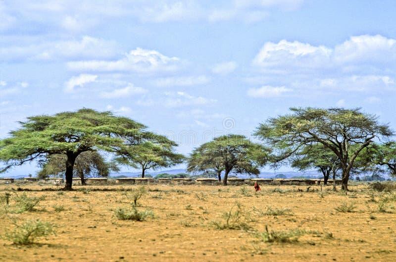 Vila de Massai fotografia de stock