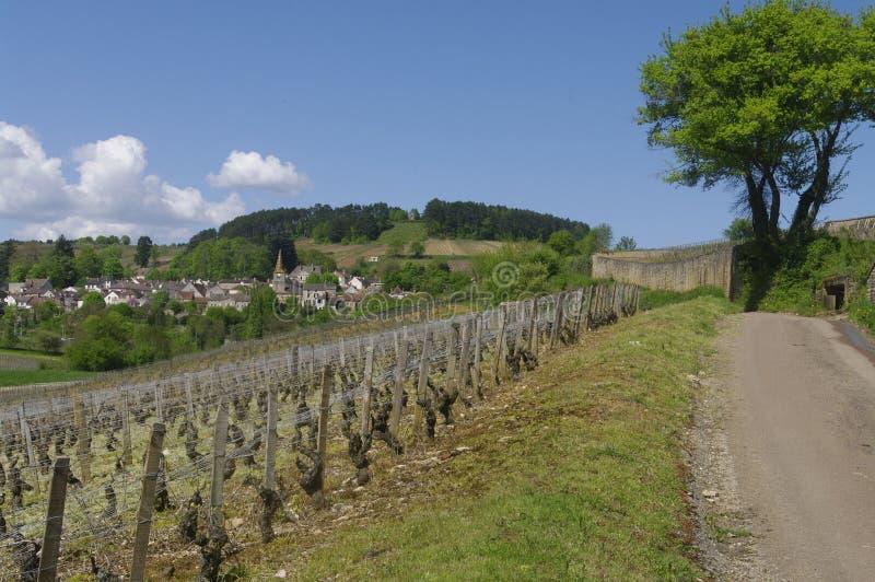 A vila de Pernand Vergelesses em Borgonha fotos de stock royalty free