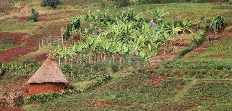 Vila em Kivu sul fotografia de stock royalty free