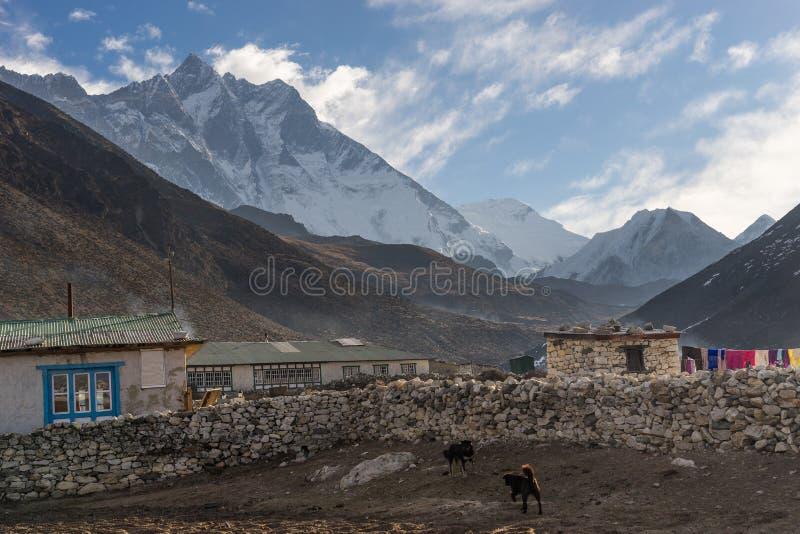 Vila em uma manhã bonita, região de Dingboche de Everest, Nepal imagem de stock