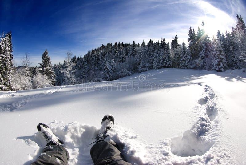 Vila i snowen, härlig vinterliggande arkivbild