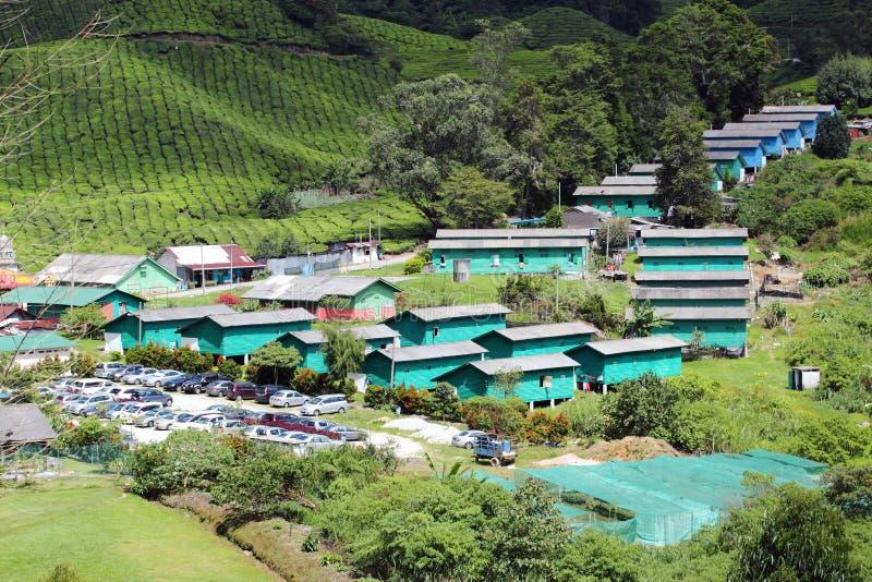 Vila na plantação de chá 01 foto de stock