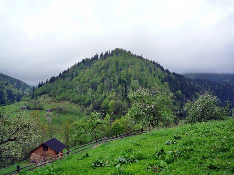 Vila nos Carpathians ucranianos fotografia de stock