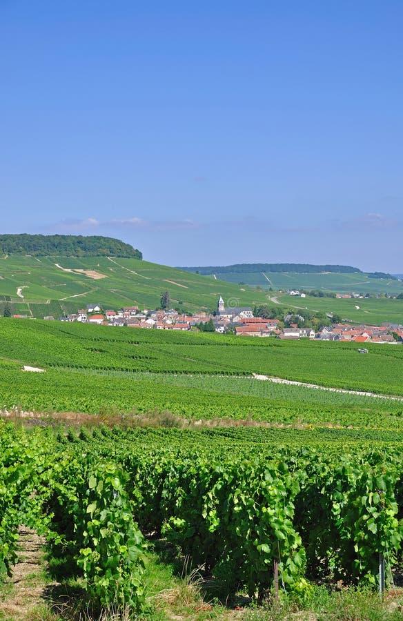 Vila Oger, Champagne, France fotos de stock royalty free
