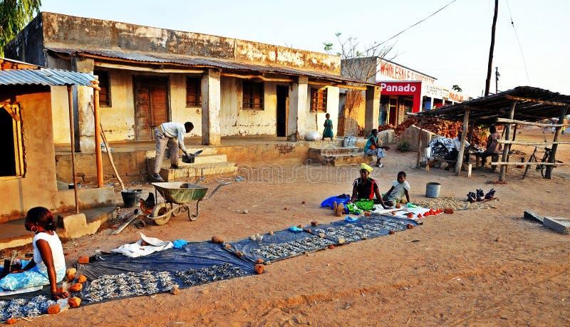Vila rural típica de Malawi foto de stock