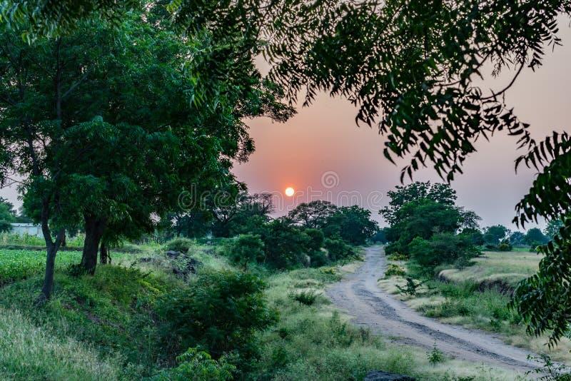 Vila rural verde vermelha india da exploração agrícola do por do sol imagens de stock
