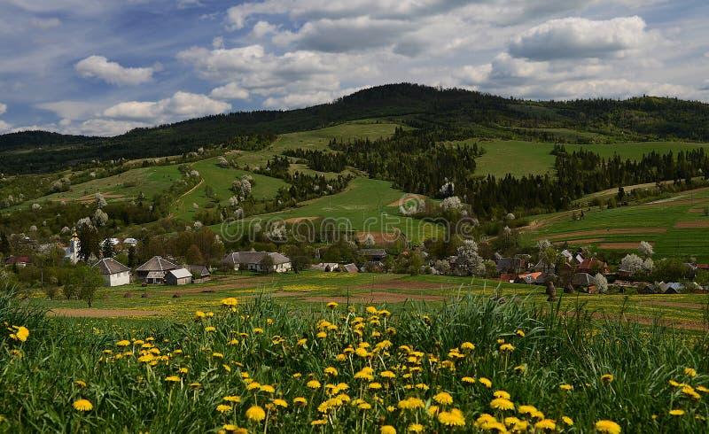 A vila ucraniana montanhosa pitoresca é cercada por flores da mola fotos de stock royalty free