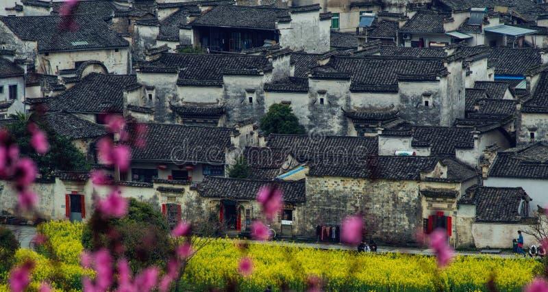 Vila velha chinesa antiga em anhui com flor, China fotos de stock