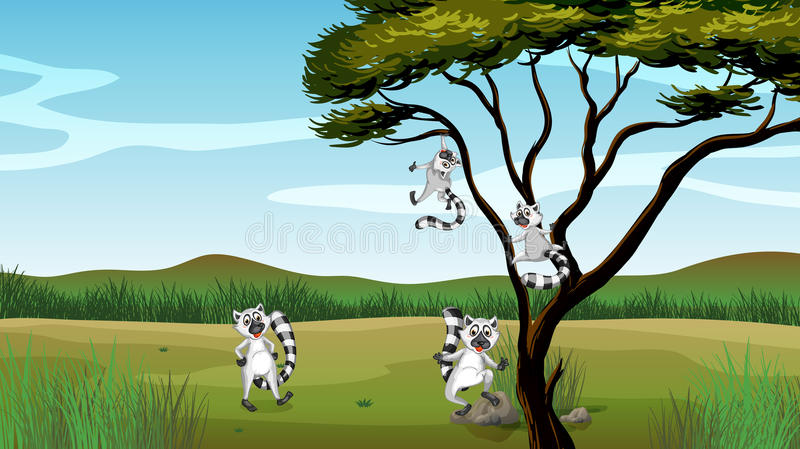 Vilda djur som spelar i trädet vektor illustrationer