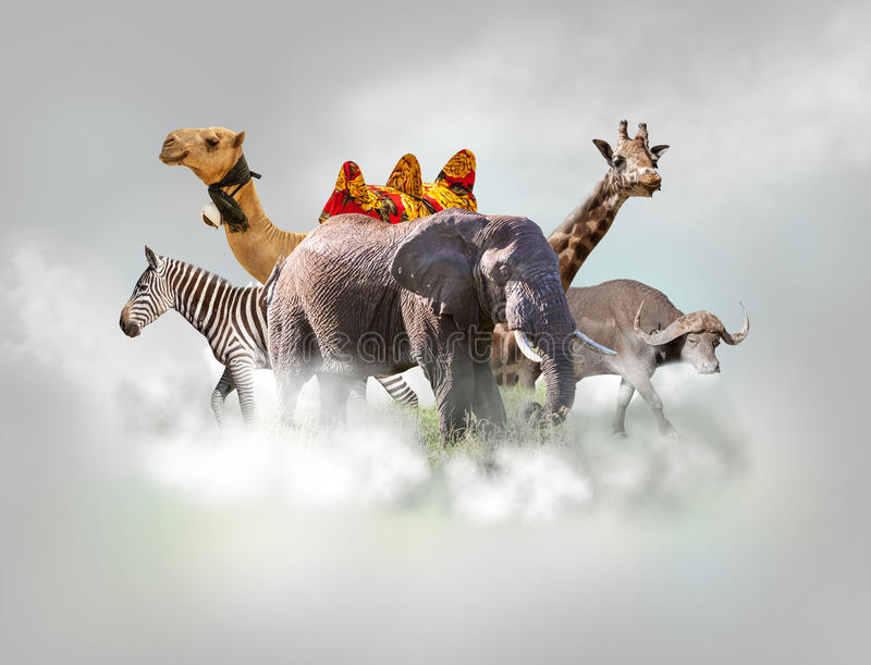 Vilda djurgrupp - giraffet, elefanten, sebra ovanför vit fördunklar i grå himmel royaltyfri foto