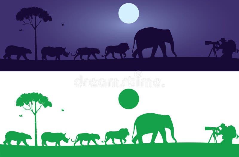 Vilda djurväggdekal vektor illustrationer
