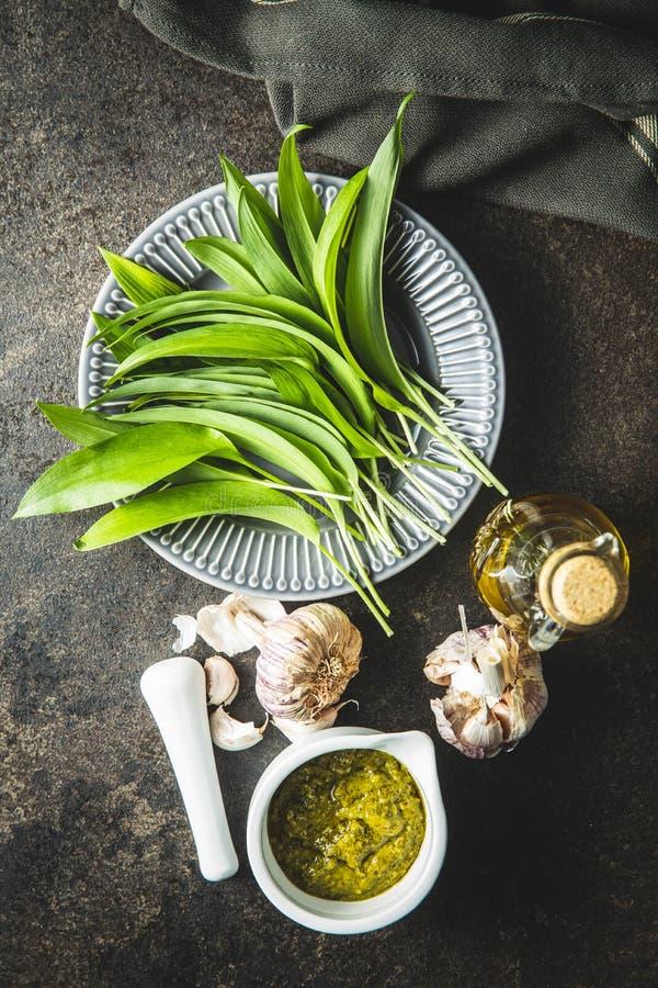 Vilda vitlökspesto- och gröna ramsons blad royaltyfri bild