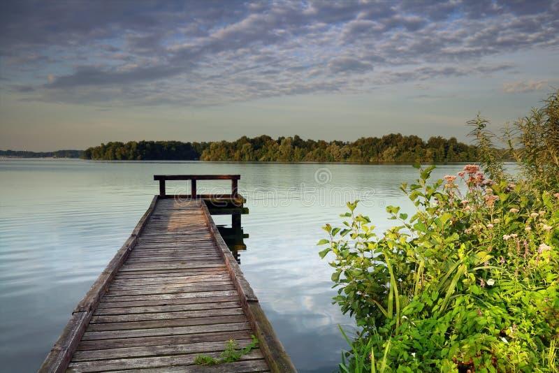Vildblommor vid pir på sjön arkivbild