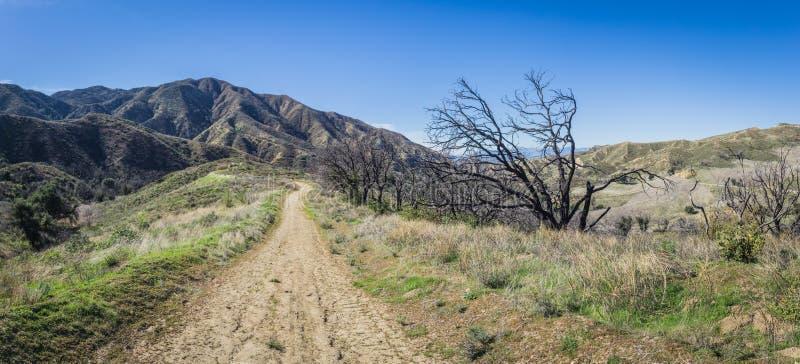 Vildmark som går slingan i Kalifornien kullar arkivfoton