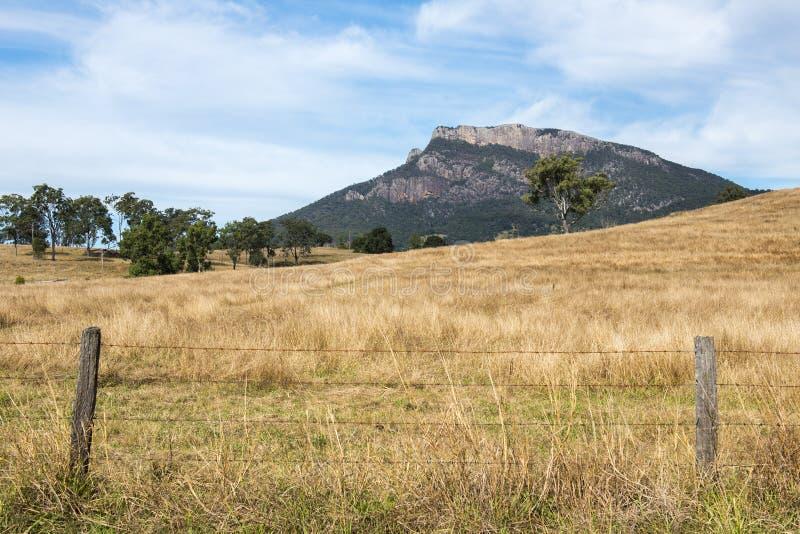 Vildmarkberg och fält i den sceniska kanten, Queensland royaltyfri foto