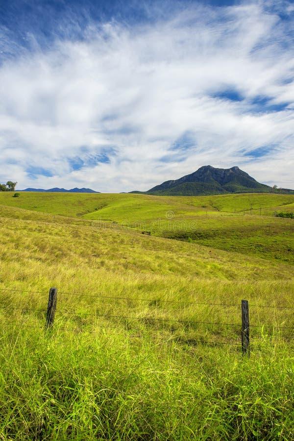 Vildmarkberg och fält i den sceniska kanten, Queensland arkivbilder