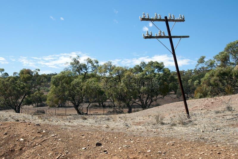 Vildmarklandskap med den gamla telegrafpolen i förgrund royaltyfria bilder