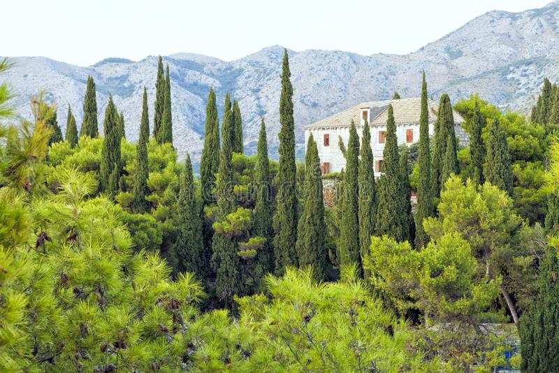 Villa auf einem Hügel hinter Zypresse und Pinien stockfoto