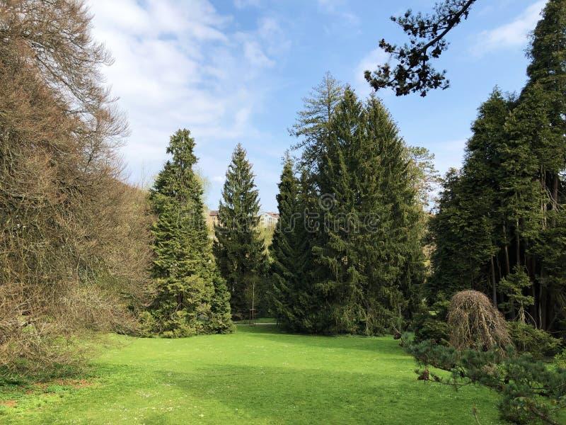 Villa Boveri Park or Der Garten der Villa Boveri or Landschaftsgarten Parkanlage der Villa Boveri, Baden stock image