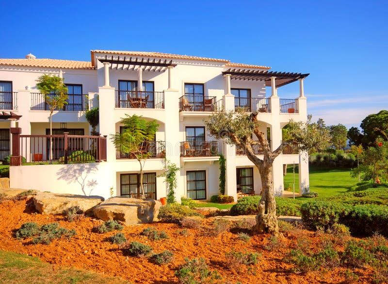 Villa de vacances, olive et ciel bleu (Portugal) photo stock