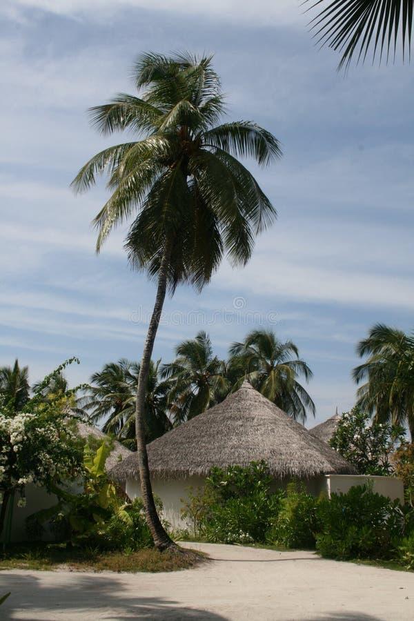 Villa della spiaggia immagine stock