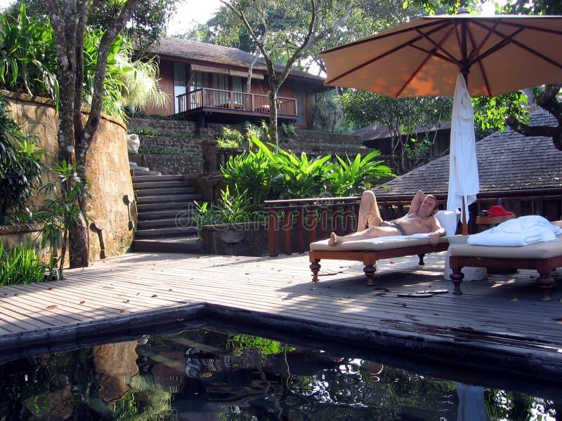 villa för bali djungelpoolside arkivfoto