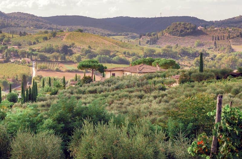 Villa i lantligt landskap av Tuscany med trädgårdträd, gröna kullar Italiensk bygd royaltyfria foton