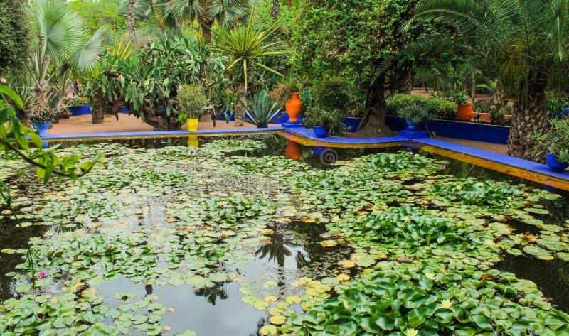 Villa Majorelle a Marrakesh, Marocco Patio del giardino immagine stock libera da diritti