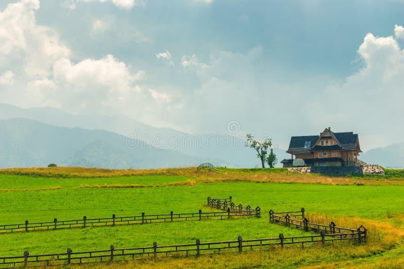 Villa på en grön gräsmatta mot bakgrunden arkivfoto